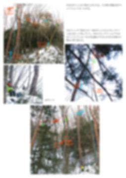 ミッドラインドリフトアンカー 3.jpg