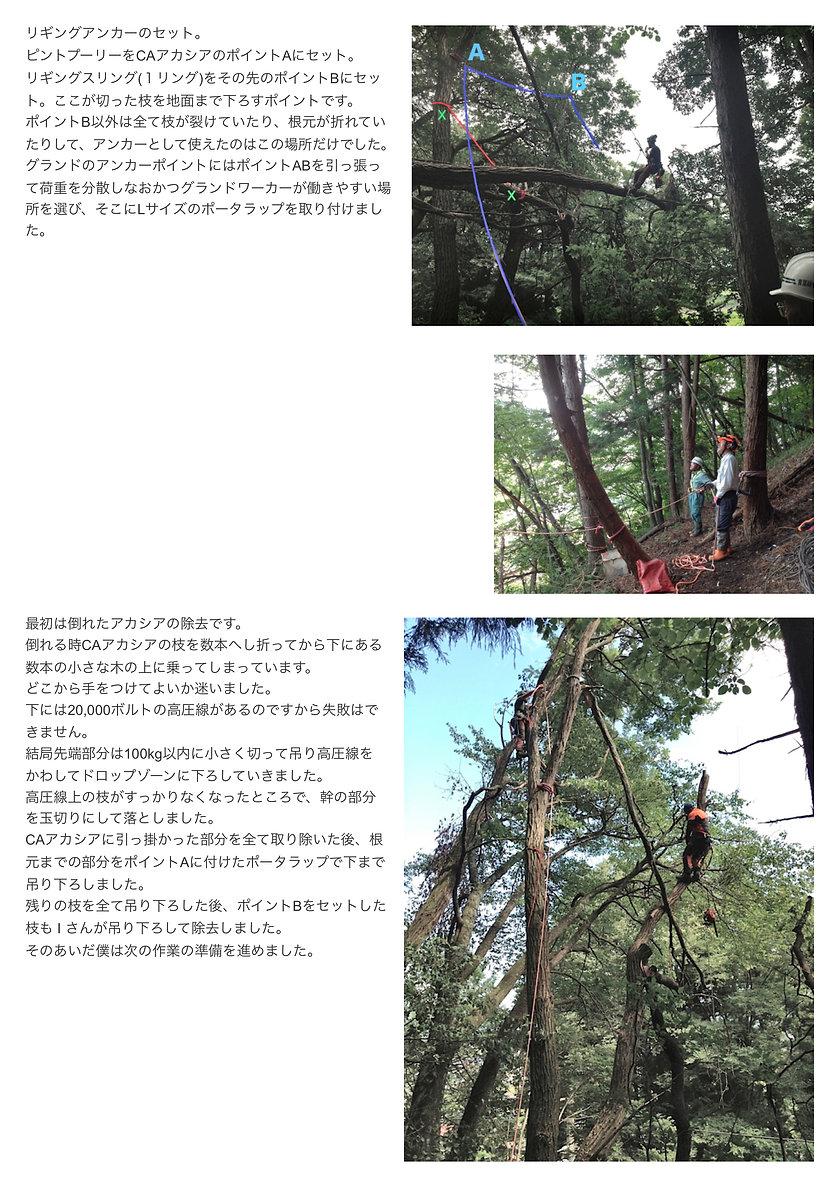 rigging_JP_2.jpg