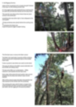 rigging_EN_2.jpg
