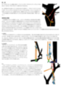 MultiSling_JP2.jpg