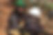 スクリーンショット 2018-11-15 11.11.52.png