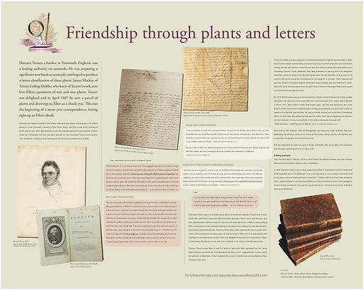 friendship through plants and letters.jp
