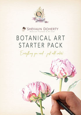botanical art pack.jpg