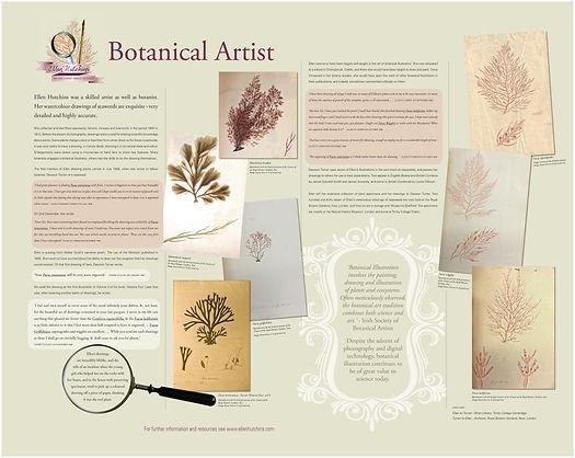 Botanical artist.jpg