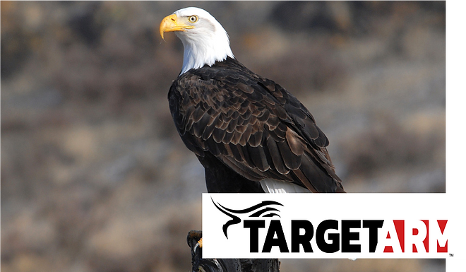 PR - Target Arm Competitively Selected for Air Force Accelerator Powered by Techstars