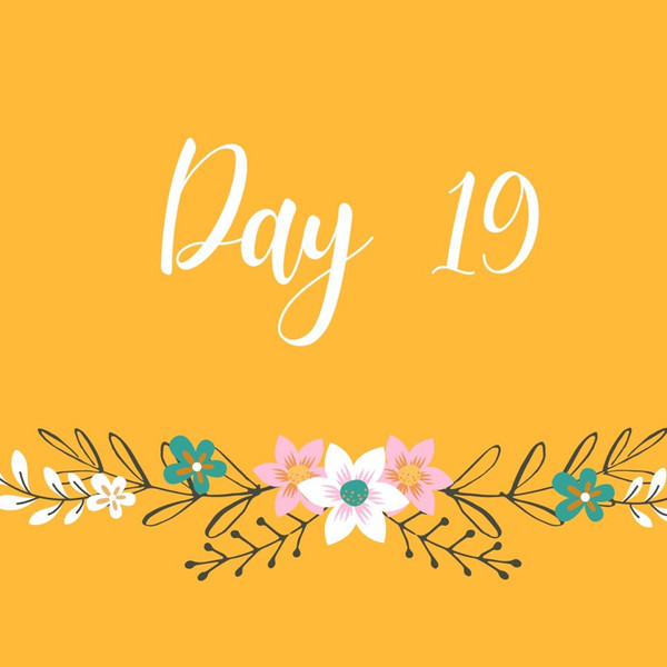 💛✨Day 19 ✨💛