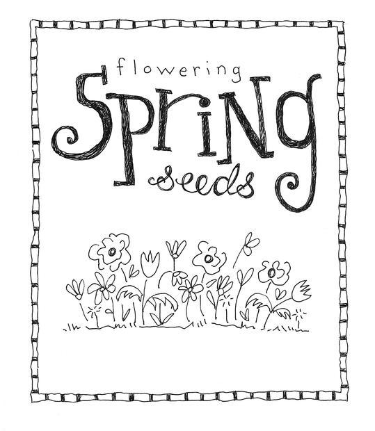 Spring_Seeds.jpeg