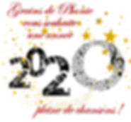 2020_-_bonne_année.jpg