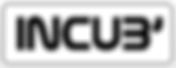 Logo Incub Pascal Lenorman