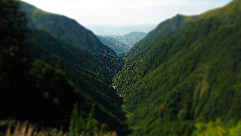 Verdant valley on the road to Omalo, Tusheti, Georgia