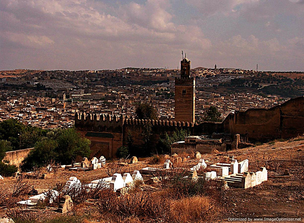 iew of Fes medina from hill to north, Morocco