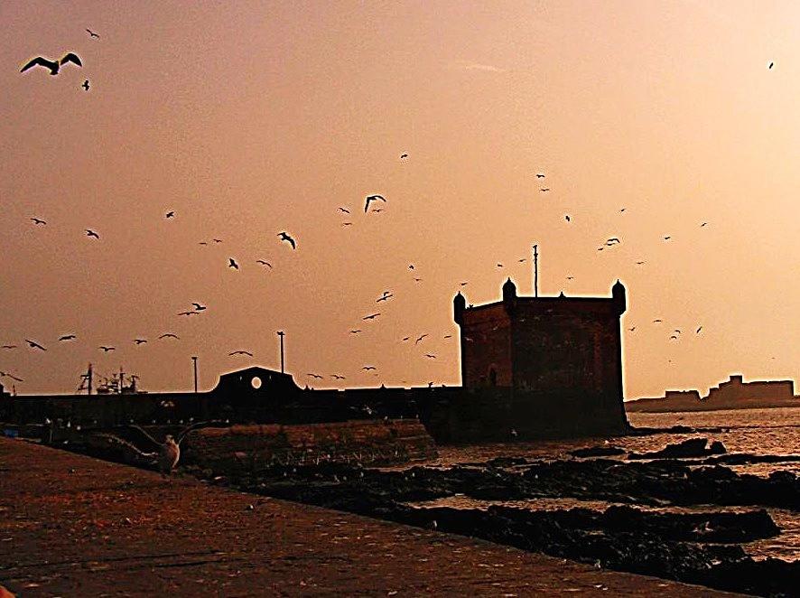 Essaouria bastion, Morocco