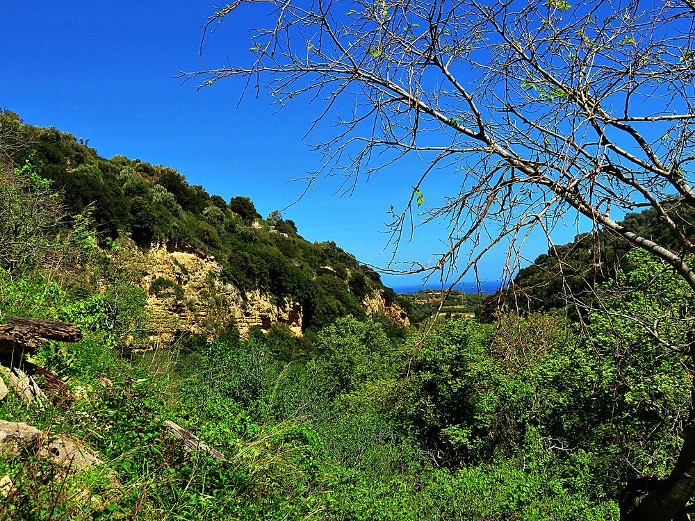 Mili gorge, near Rethymno, Crete