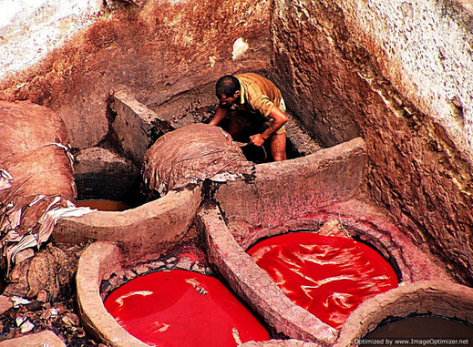 Tannery worker, Fes, Morocco