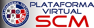 LOGO PLATAFORMA VIRTUAL.png