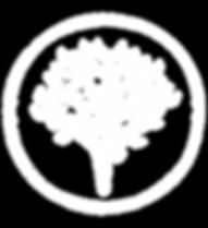 forest-schools-logo-transparent.png