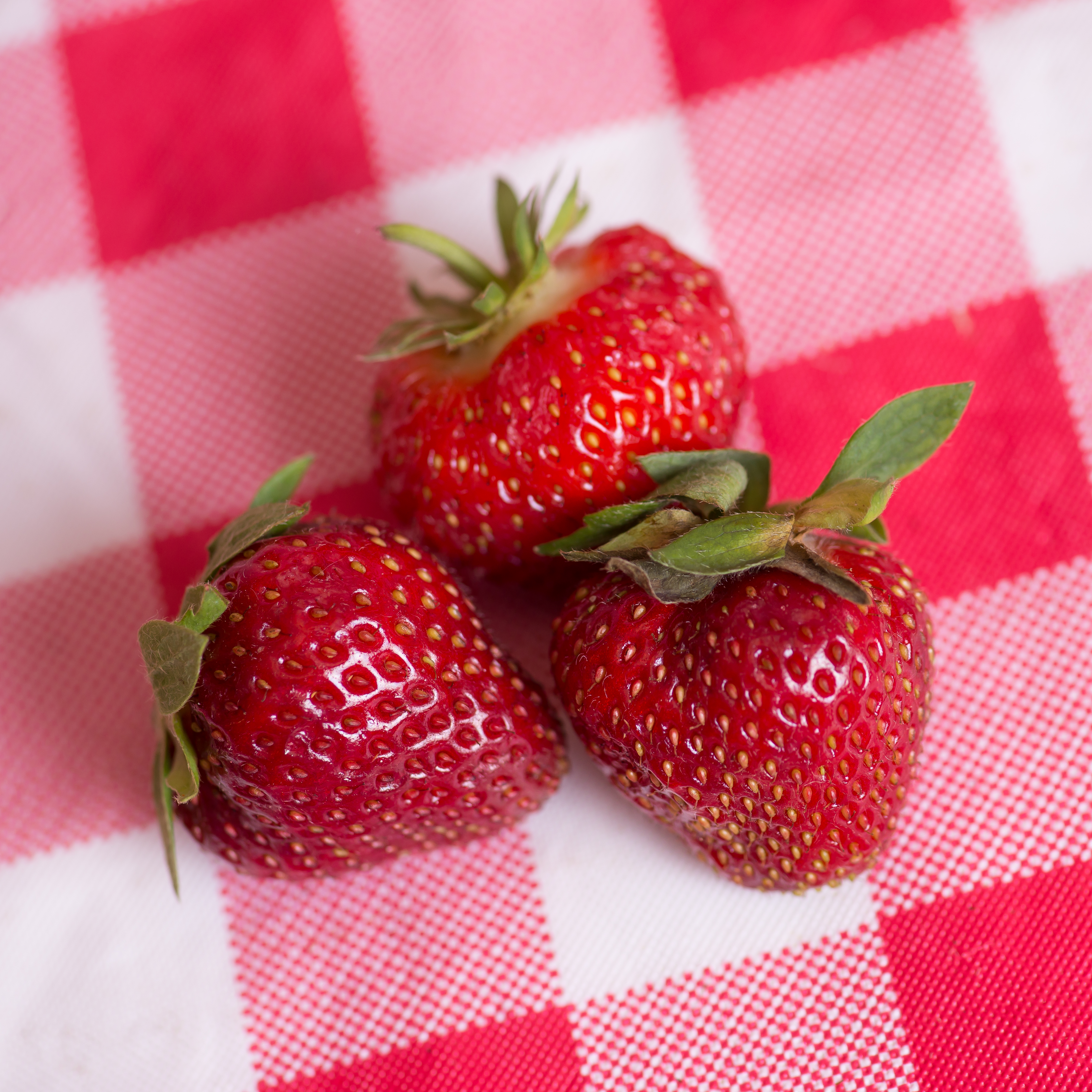strawberries-8985