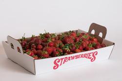 strawberries-8819