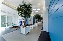 NKLA Adoption Center 05