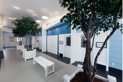 NKLA Adoption Center 04