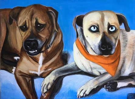 Layla & Blue