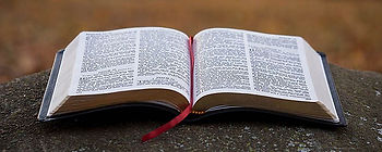 Sunday readings 3.jpg