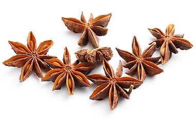 star-anise-HNHBUPZ_edited.jpg
