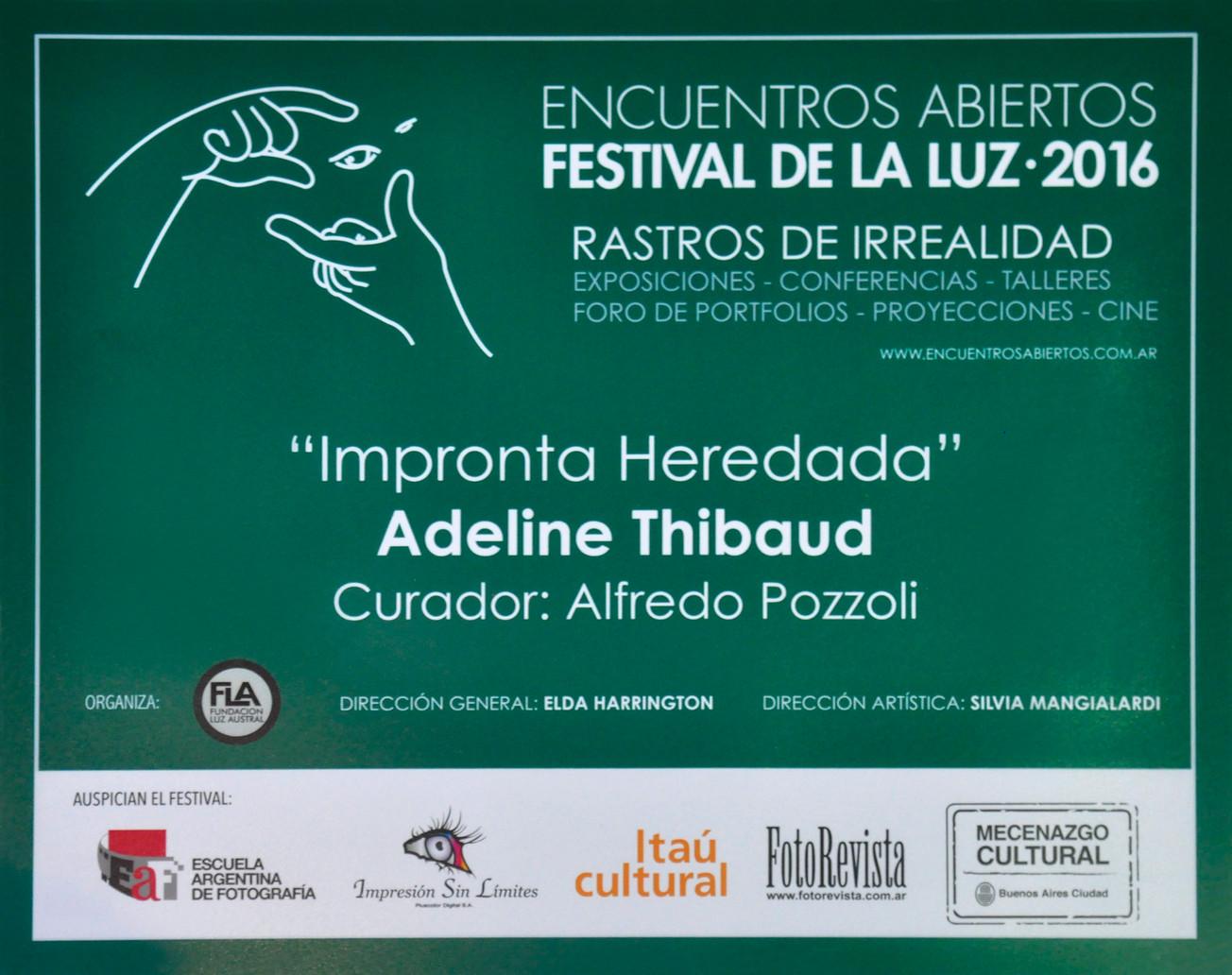 2016 Festival de la Luz .jpg