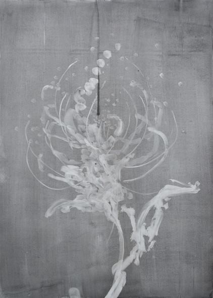 Herbier fusain sur papier de pierre 30 x 42 cm - 2020