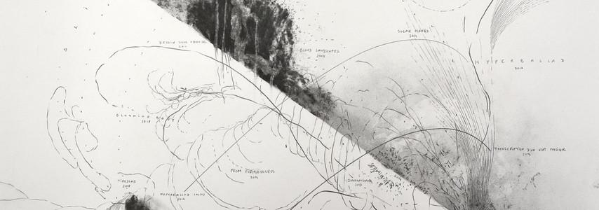 Cartes incertaines mine de plomb, fusain 50 x 70 cm 2020