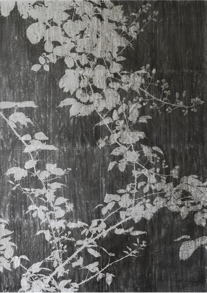 The garden of shadows (ronces) fusain sur papier de pierre 240 x 160 cm 2021