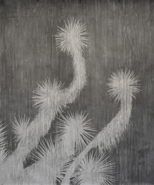 The garden of shadows (Yucca arboretum) fusain sur papier de pierre 260 x 220 cm 2021