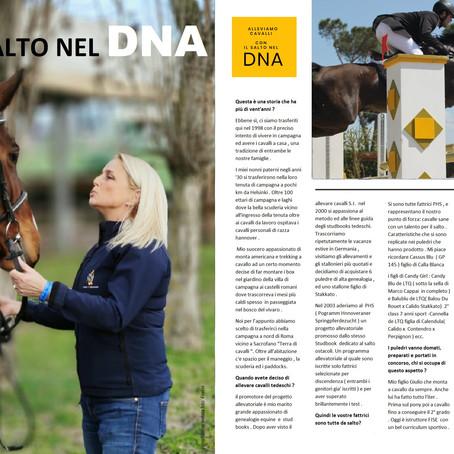 Cavalli con il salto nel DNA