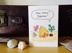 AB123C Mr Hermit crab has a new home