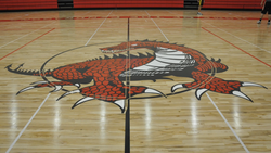 Dragon on gym floor
