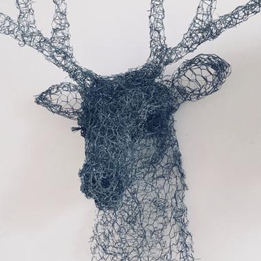 Little Deer, 2016