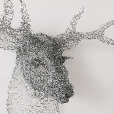 Silver Stag, 2017
