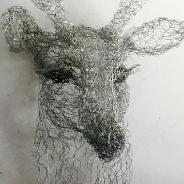 Cute Deer, 2017