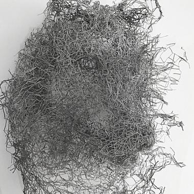 Furry, 2013