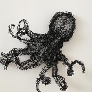 Black Octopus, 2016