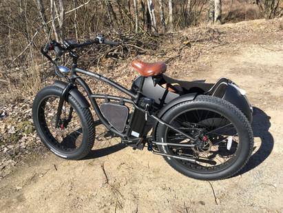 Spaßgarantie: Beiwagen E-Bike