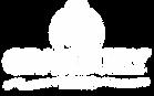 Granbury Logo.png