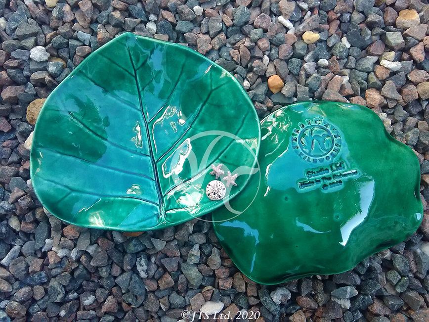 Green Seagrape Silver Attach front and B