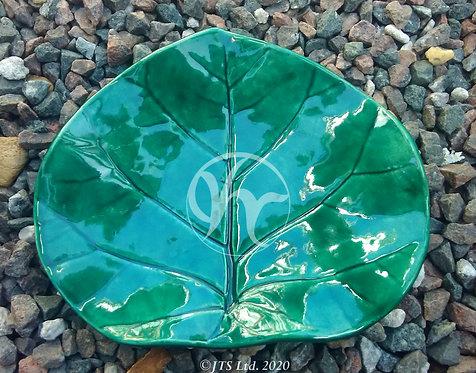 JTSL Seagrape Tray (green)