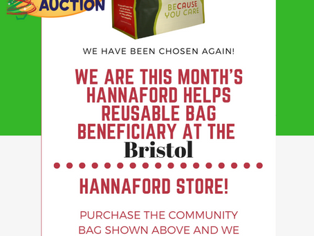The Children's Auction is the recipient of the Community Bag Program in Bristol store for November