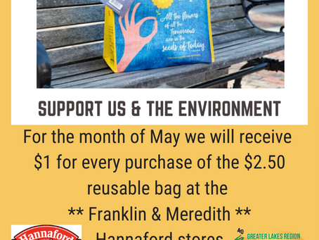 The Children's Auction is the recipient of the May Community Bag Program in Franklin & Meredith