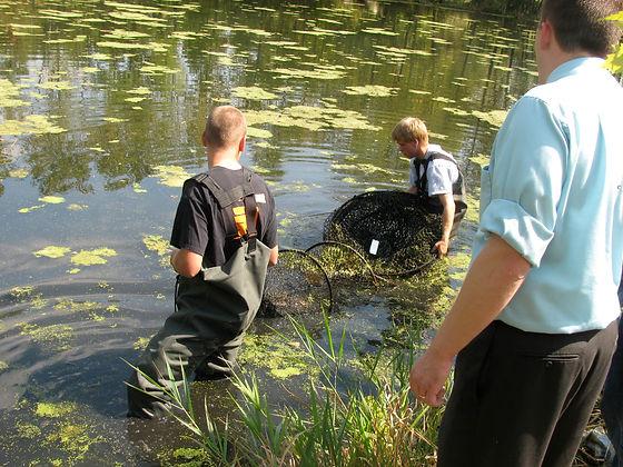 DEFINE - Pond Inquiry.JPG