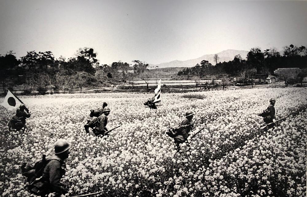 日中戦争写真 花と兵士 戦争と花写真展 AMKK