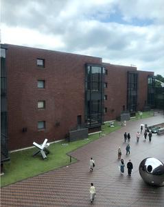 上野の東京都美術館。雨上がりの6月。クリムト展に行った日のブログ