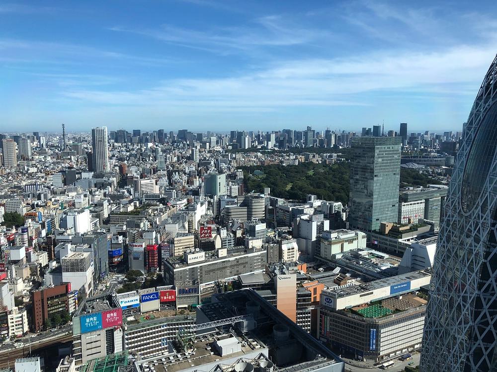 損保ジャパン日本興亜美術館からスカイツリーが見える。インテリアコーディネーターのブログ。